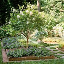 42Choosing the Right Spot for Your Garden